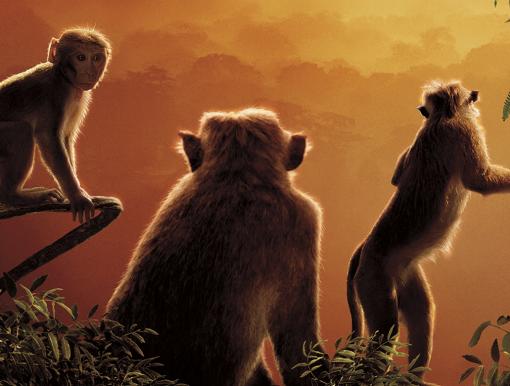 Mbreteria e majmuneve
